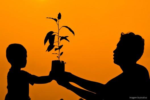 Os adultos e as crianças terão à sua disposição uma horta orgânica projetada para suprir além de uma alimentação saudável: o contato com as plantas e o processo de cuidar, colher e levá-las frescas para a mesa.